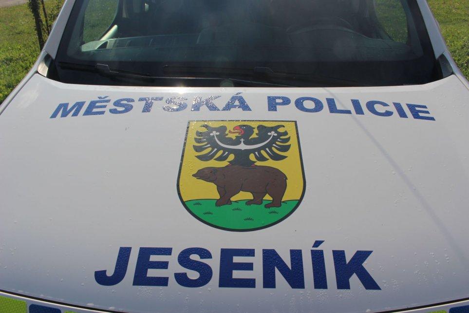 MĚSTSKÁ POLICIE BUDE MÍT NOVÉ VEDENÍ